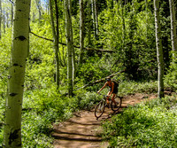 Pinecone trail, Park City, 6-9-13