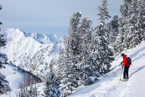 Looking for untracked powder, Alta 12-26-14